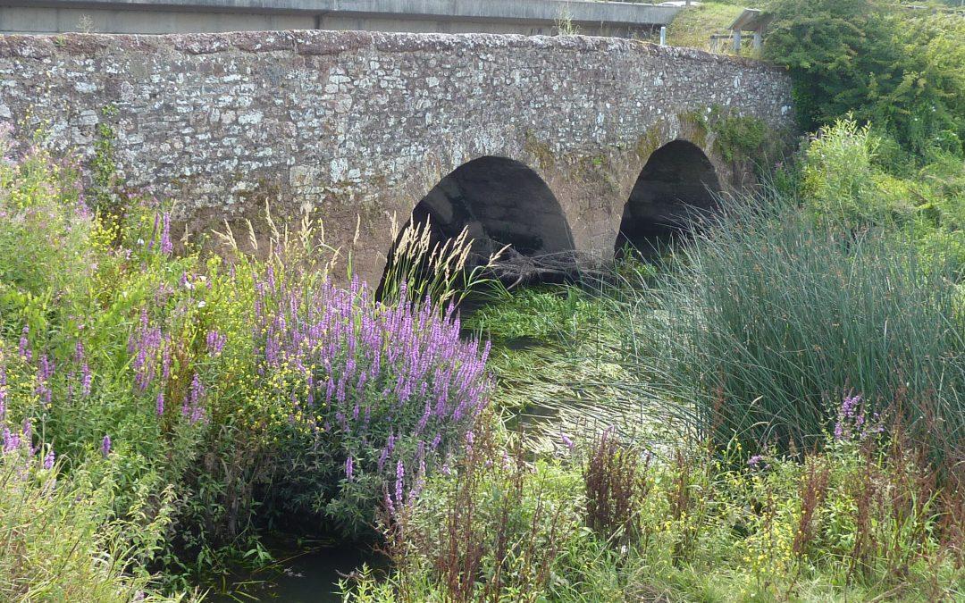Clyst Bridge Footpath Access Temporary Closure – Footpaths 10 & 11 Sowton